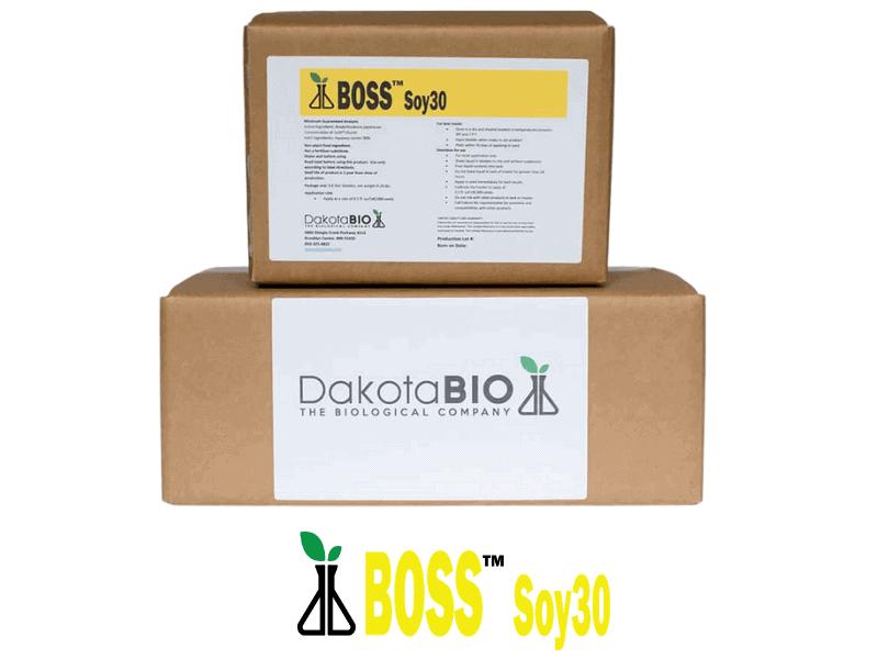 DB BOSS Soy30 2